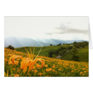 Cartão Vale dourado da flor do hemerocallis