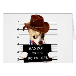 Cartão vaqueiro da chihuahua - cão do xerife