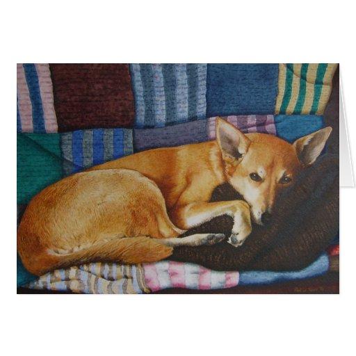 cartão vazio da arte misturada do realista do cão