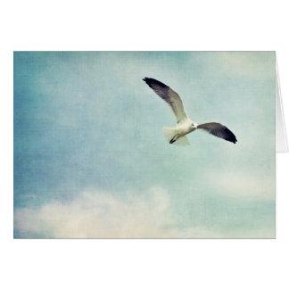 Cartão vazio da gaivota