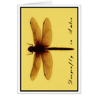 Cartão vazio da libélula