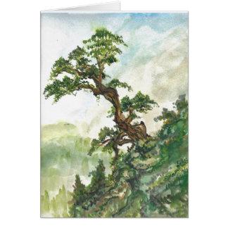 Cartão vazio da paisagem chinesa do pinheiro