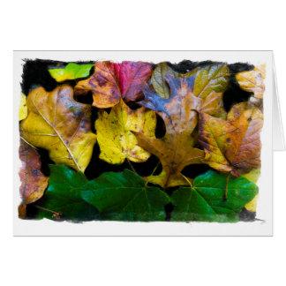Cartão vazio das folhas de outono por Tom Minutolo