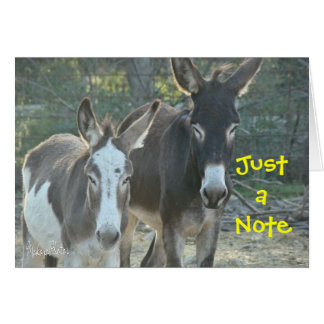 Cartão vazio das mulas
