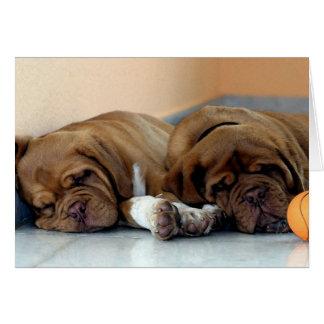Cartão vazio de Dogue De Bordéus Cão