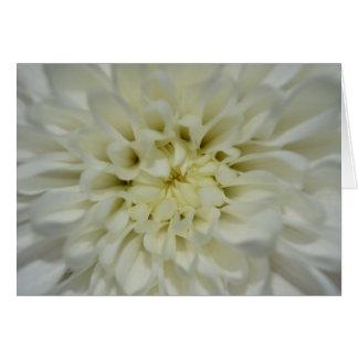 Cartão vazio de flor branca