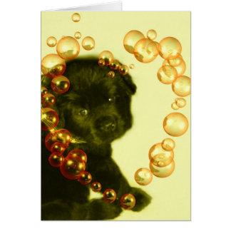Cartão vazio de Terra Nova Dog~