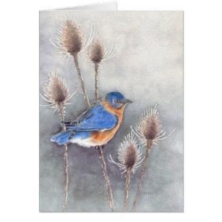 Cartão vazio do Bluebird