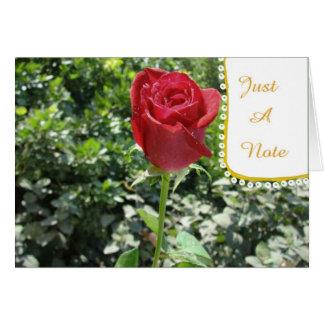 Cartão vazio do botão da rosa vermelha da
