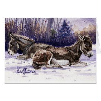 Cartão vazio do Burro da sesta do inverno longo