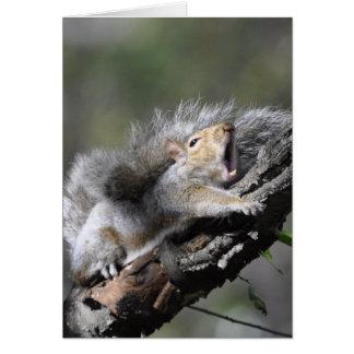 Cartão vazio do esquilo sonolento engraçado