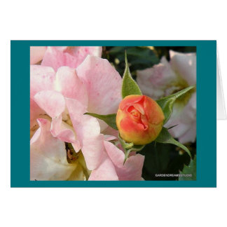 Cartão vazio do Rosebud novo do alvorecer