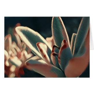 Cartão vazio do Succulent vermelho e verde