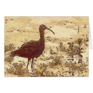 Cartão vazio dos íbis do pântano