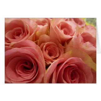 Cartão vazio dos rosas