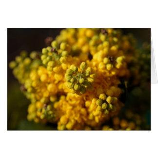 Cartão vazio: Flores infinitas