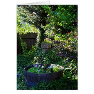 Cartão vazio, jardim da viola