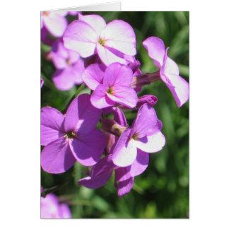 Cartão Vazio roxo dos Wildflowers