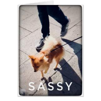 Cartão vazio Sassy de Pomeranian