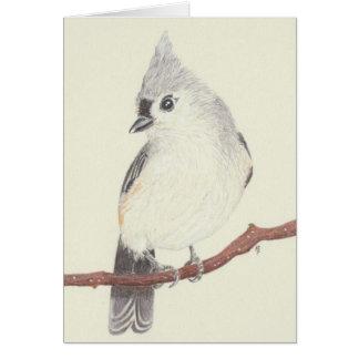 Cartão vazio - Titmouse adornado