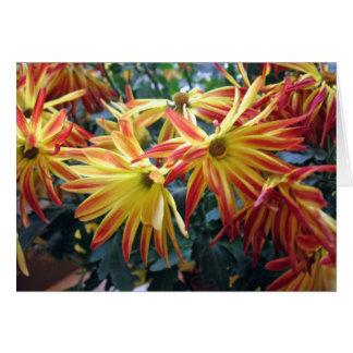 Cartão Vazio vermelho e amarelo das flores