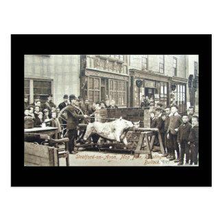 Cartão velho, espanador 1897 de Stratford-em