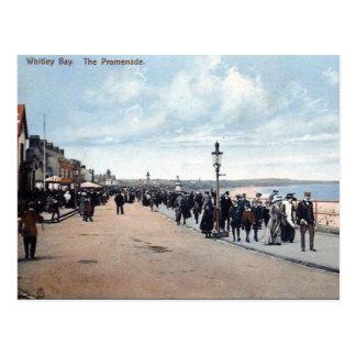 Cartão velho - o passeio, baía de Whitley