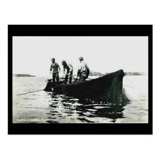 Cartão velho - Terra Nova, pesca de bacalhau
