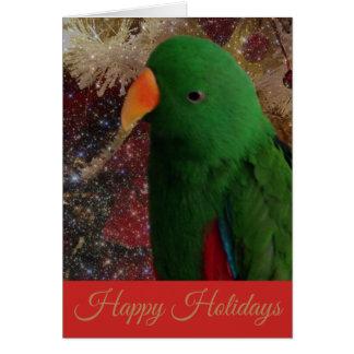 Cartão verde da época natalícia do papagaio de
