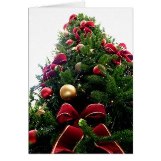 Cartão verde da maravilha da árvore de Natal