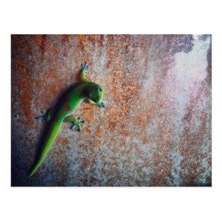 Cartão verde do geco