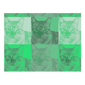 Cartão verde do pop art do gato