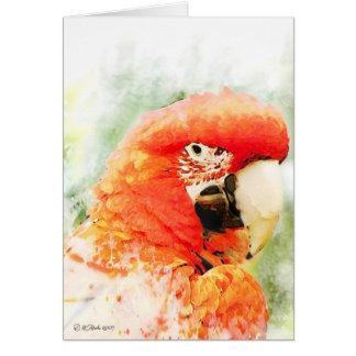 Cartão vermelho da aguarela do Macaw