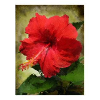 Cartão vermelho da flor do hibiscus