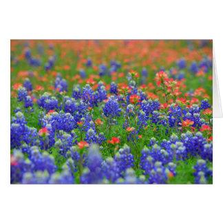 Cartão vermelho e azul do Wildflower