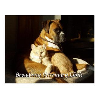Cartão veterinário da nomeação do cão e gato
