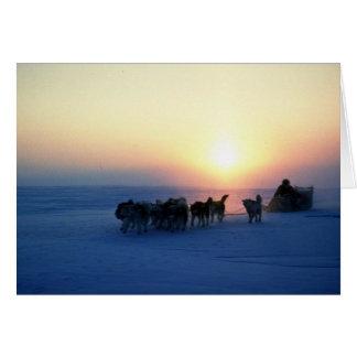 Cartão Viagem do trenó do cão em 45 graus de Celsius,