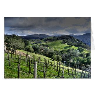Cartão Vinhedo de St Helena, Califórnia