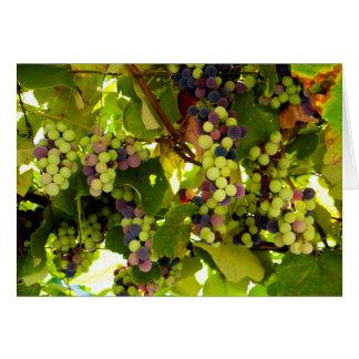 Cartão Vinho crescente