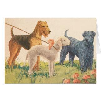 Cartão Vintage - 3 raças do cão de Terrier (vazio para