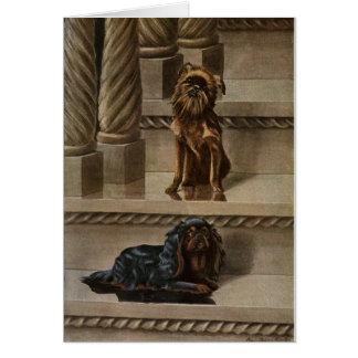 Cartão Vintage - dois cães em uma escadaria,