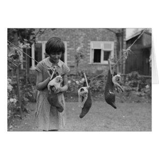 Cartão Vintage - gatos de suspensão da menina para fora a