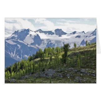 Cartão Vista dos prados de Monica, Columbia Britânica,