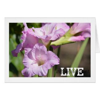 Cartão Viva no tipo de flor do momento