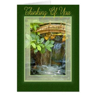 Cartão vivo da água