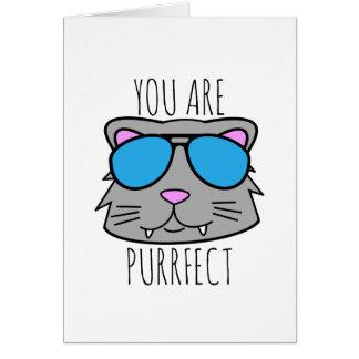 Cartão Você é Purrfect