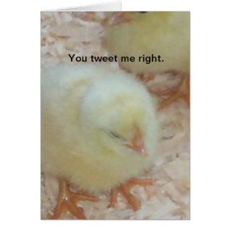 Cartão Você tweet mim certo