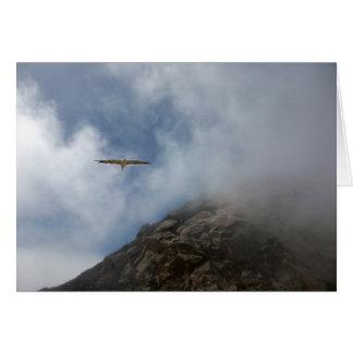 Cartão Vôo da gaivota pela rocha de Morro