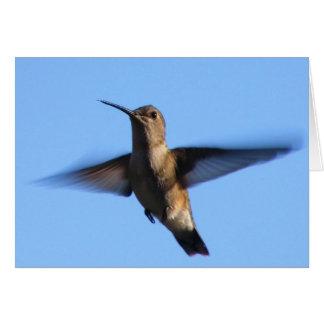 Cartão vôo do colibri 3aJ em um céu azul