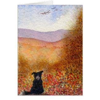 Cartão Vôo do outono, cão de border collie